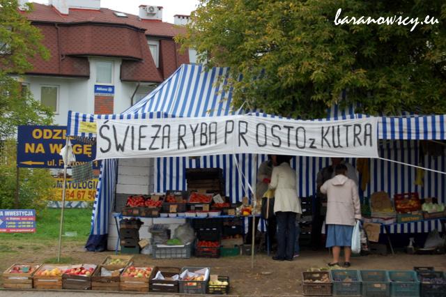 swieza_ryba
