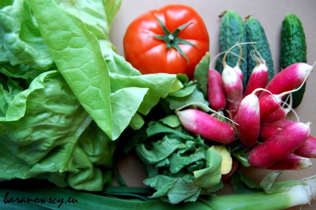 dieta_warzywa