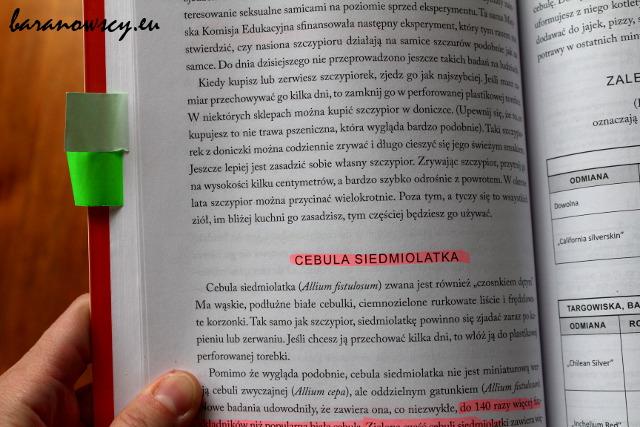 dzikastrona_1