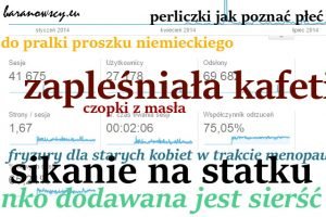 statystyki2014