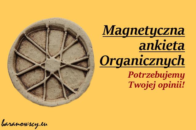 magnesy_0