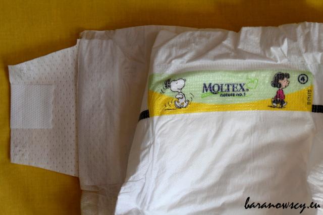 moltex_1