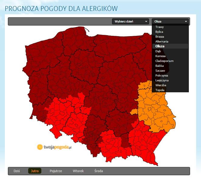 http://www.twojapogoda.pl/tematyczne/dla-alergikow