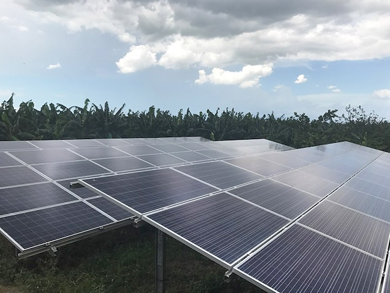 Panele słoneczne zasilające system nawadniający. Zdjęcie: http://www.biotropic.com