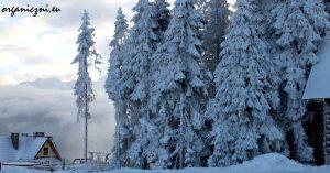 zima_w_gorach_0