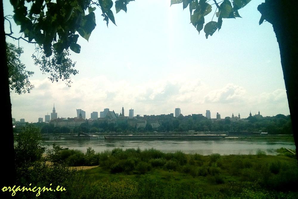 Park linowy Warszawa, widok z trasy wysokiej
