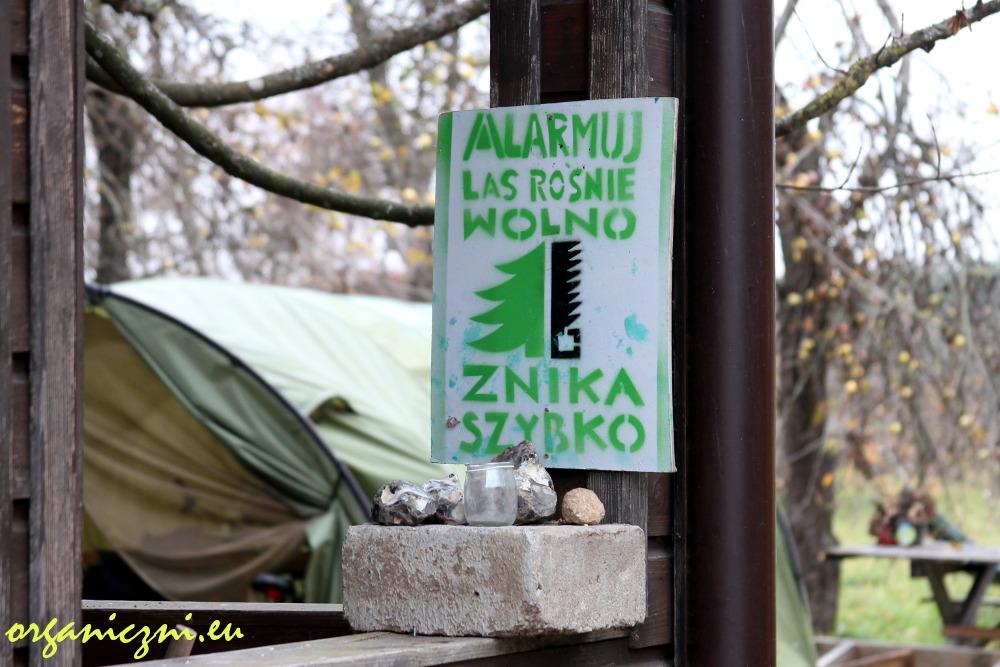 Obóz dla Puszczy