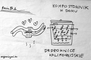 Warsztaty kompostowe: miłość dżdżownic