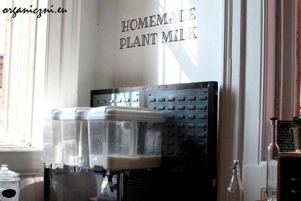 Napój roślinny | plant drink