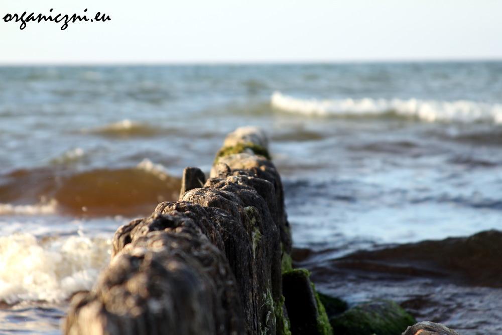 Bałtyk jest jednym z najbardziej zanieczyszczonych mórz na świecie