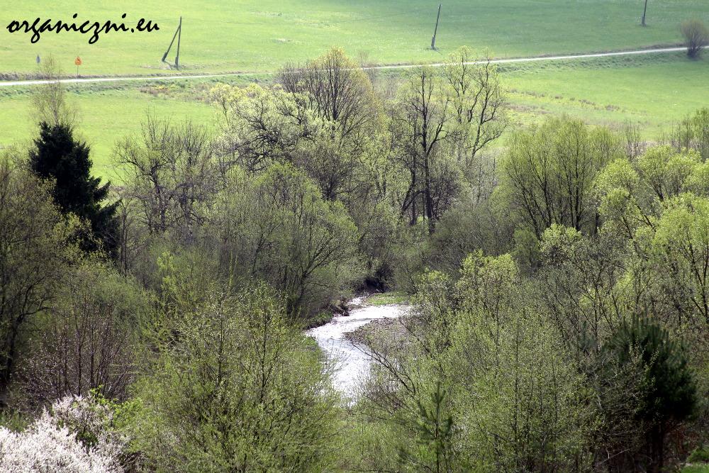 Beskid Niski, rzeka Biała