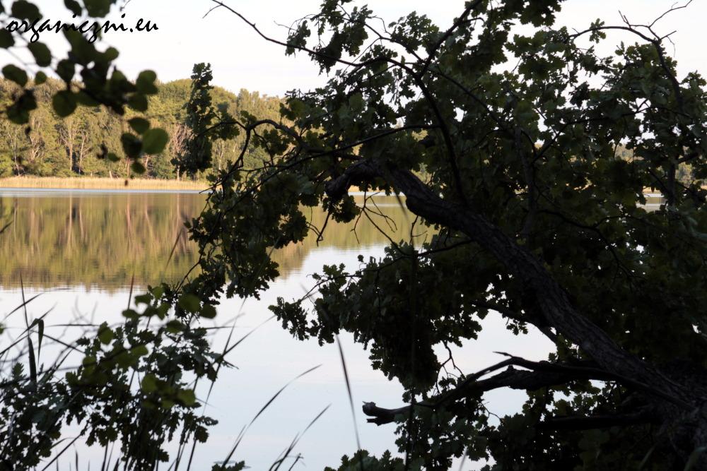 Wolin, Jezioro Czajcze