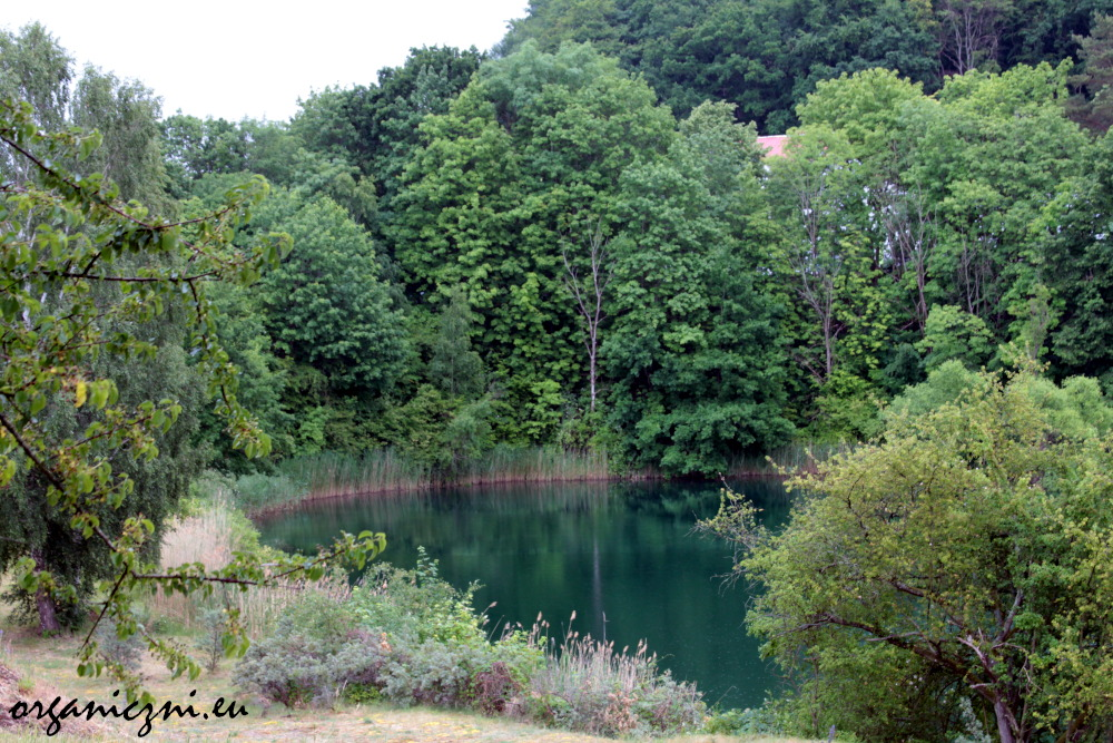 Jezioro Turkusowe w Wapnicy