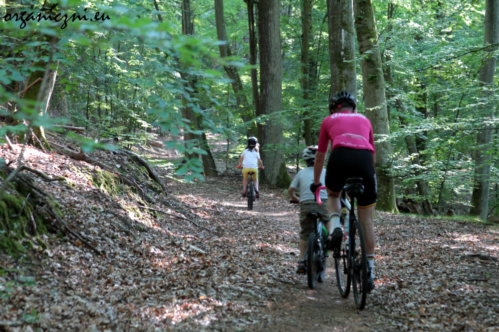 Wolin warto zwiedzać na rowerze